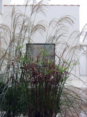 patio-contemporain-3