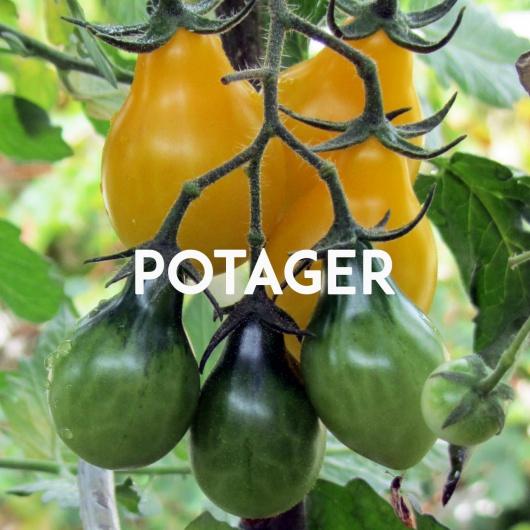 potager_thumb2