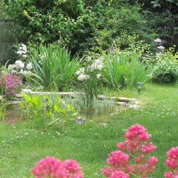 un jardin avec bassin à La Rochelle