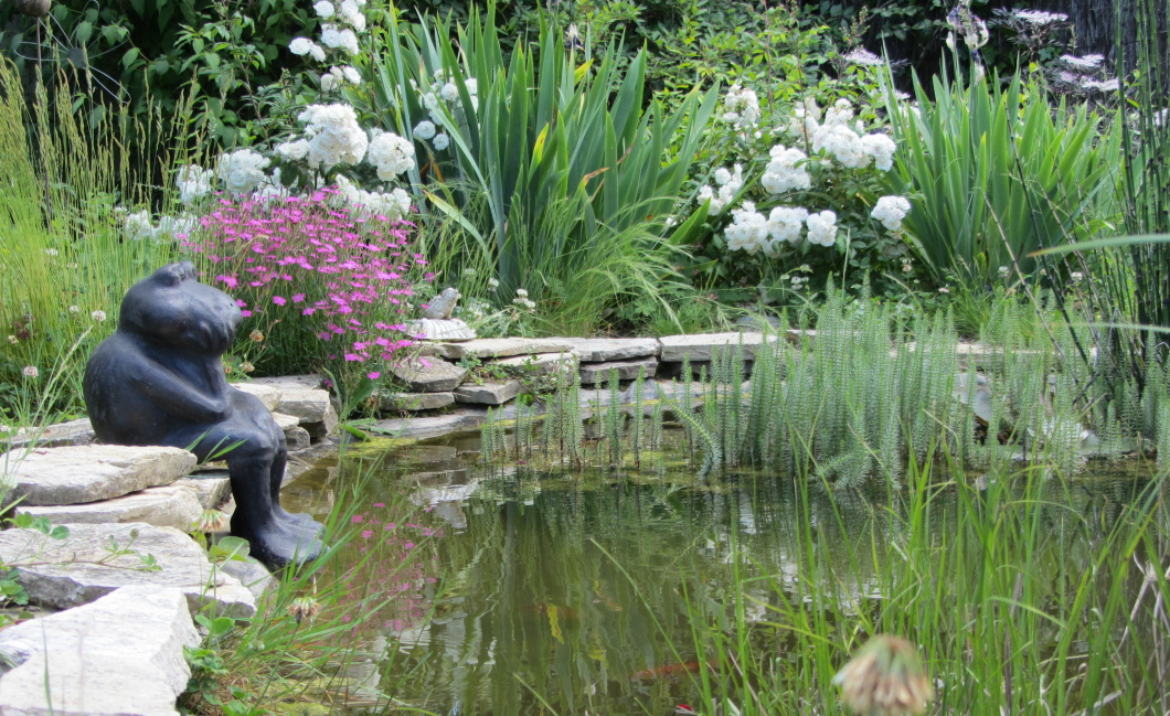 jardin avec bassin à La Rochelle